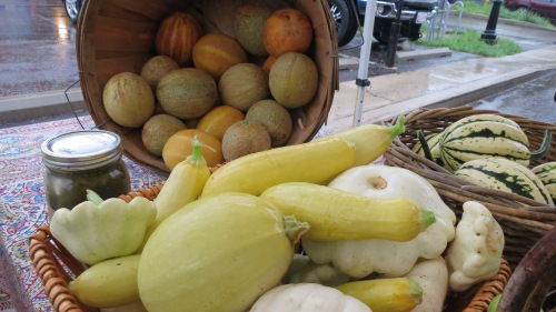 Melons and Squash
